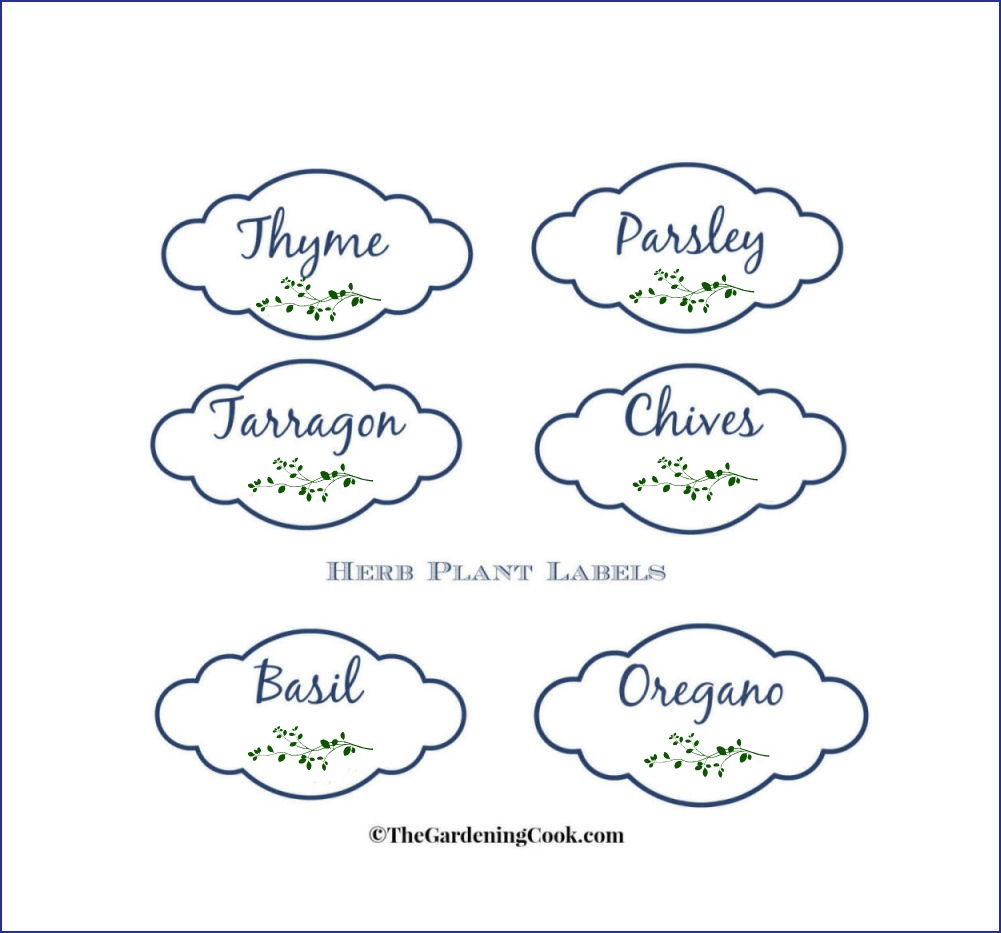 image about Printable Plant Labels titled Herb Backyard garden Labels No cost Printable Gardening: Flower and