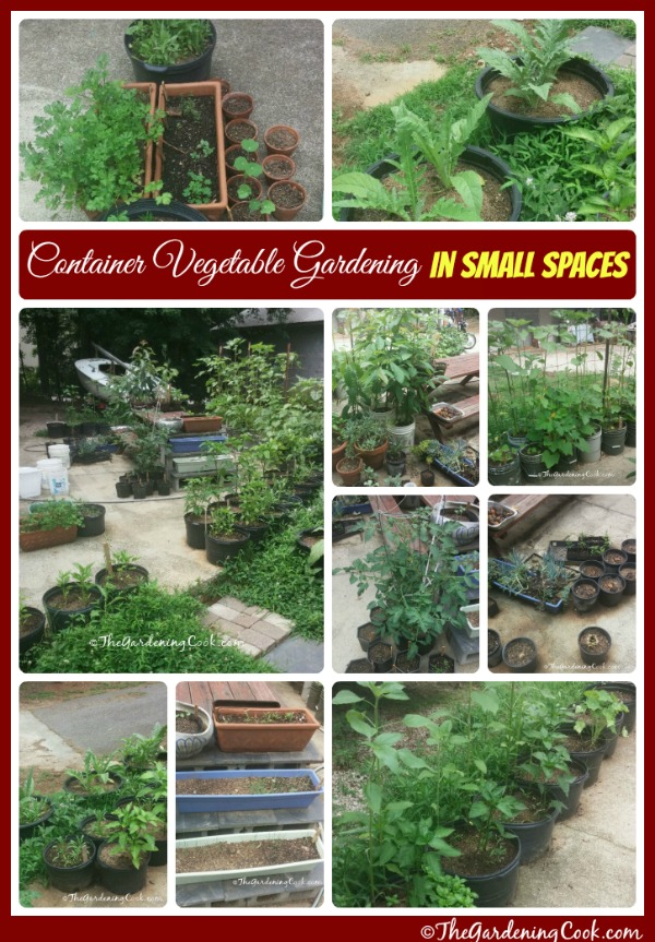 Container Vegetable Gardens For Small Spaces The Gardening Cook