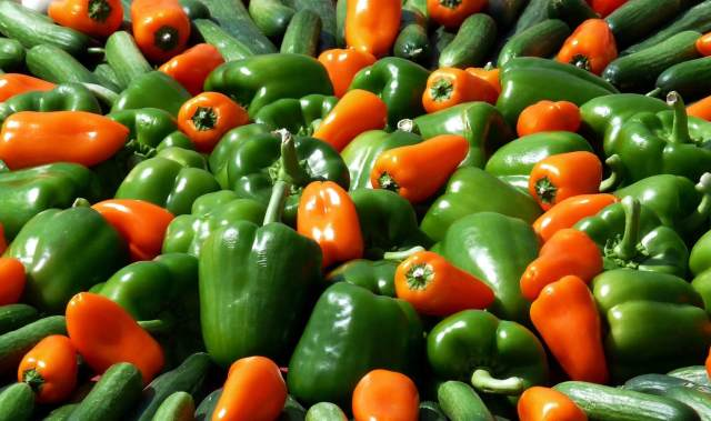 pepper variety - how to grow peppers from seed
