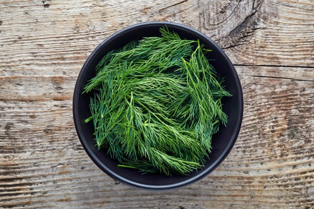 harvested dill