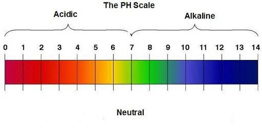 ph level of soil