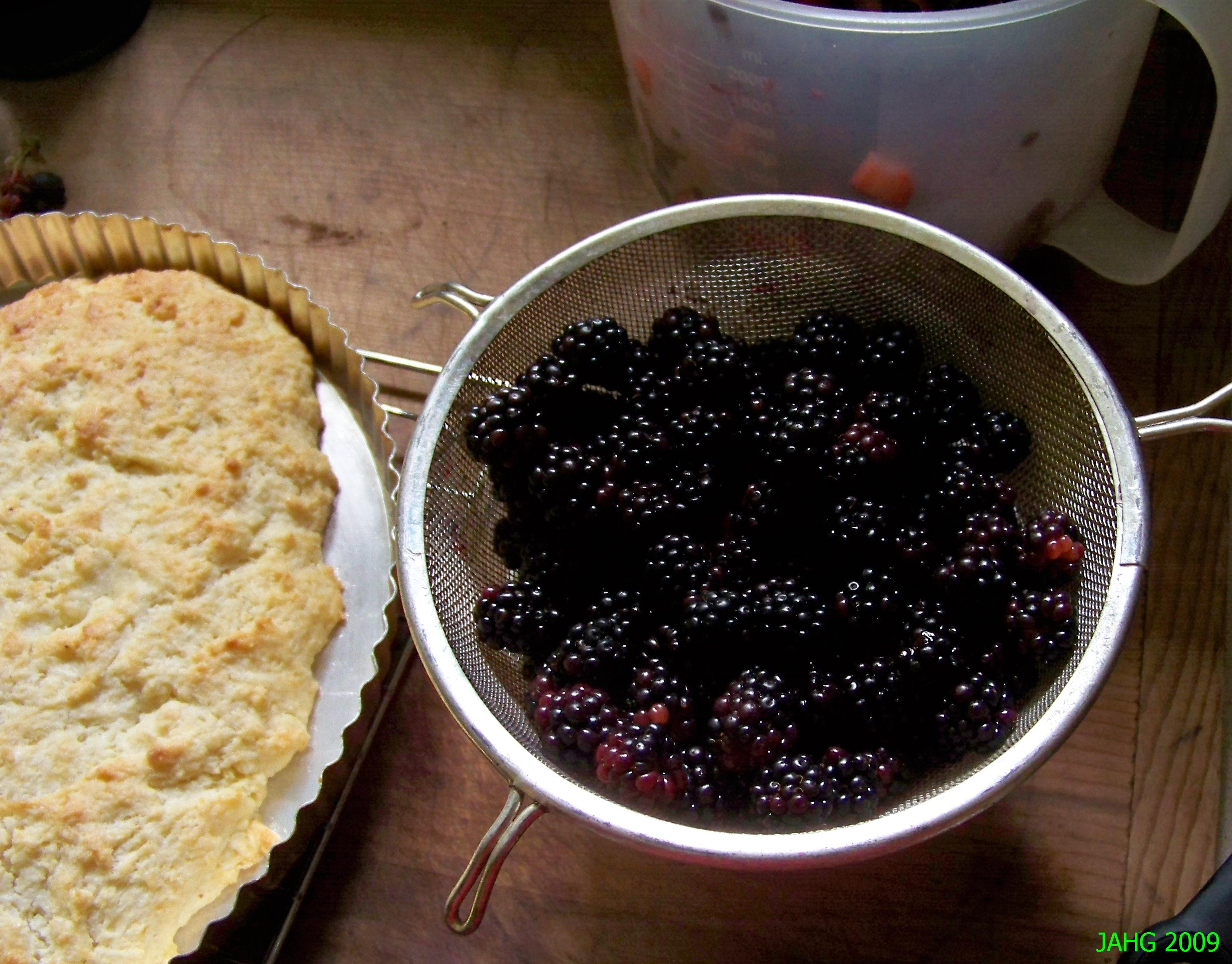 Freshly washed Blackberries waiting to made into Blackberry Shortcake.
