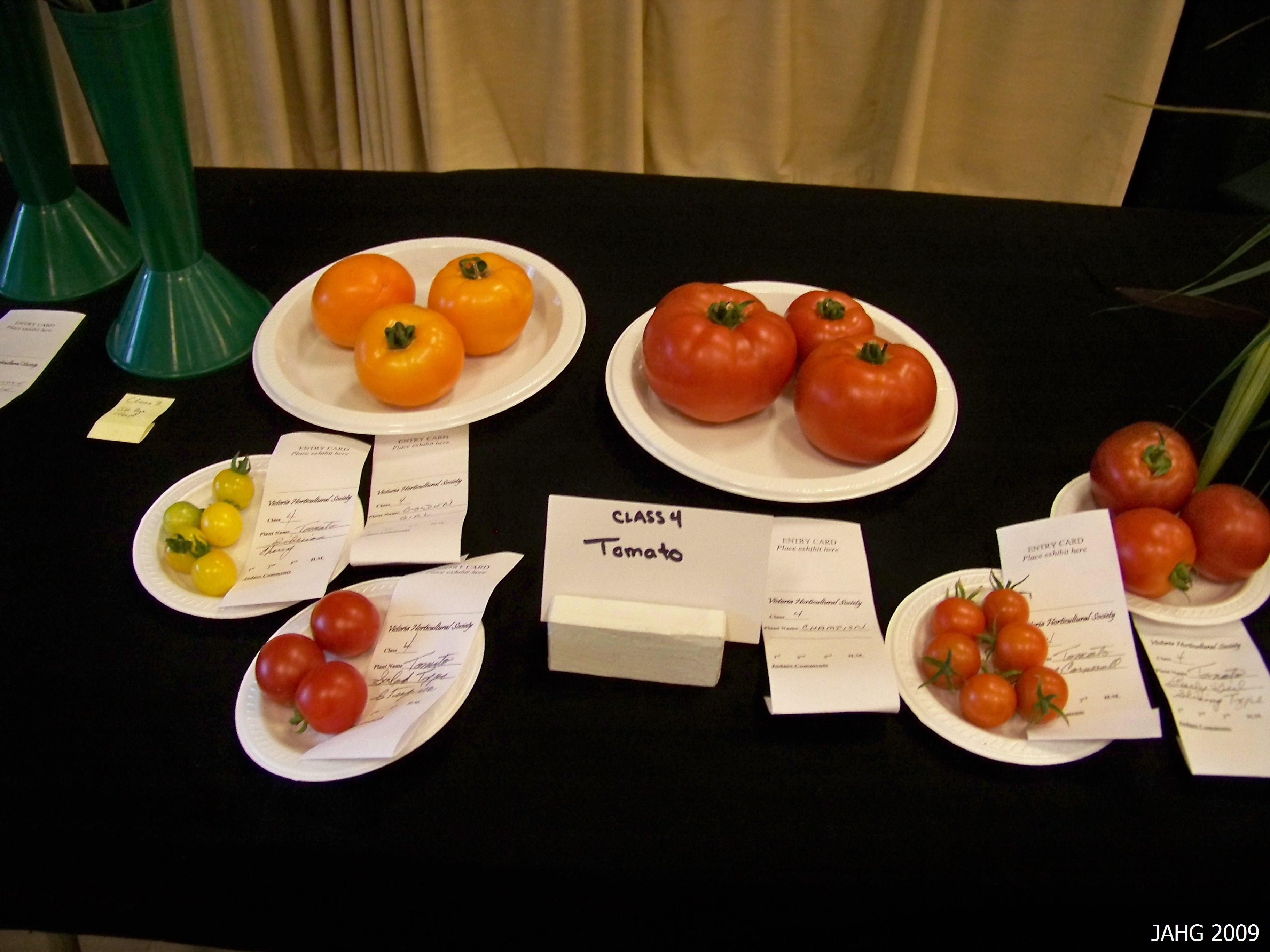 A few of the many varieties available today, from large fleshy beefsteaks to the tiny berry forms.