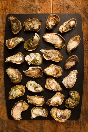 Grilled Oysters with Wasabi Mayo-4