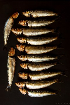 Grilled Sardines with Ramps and Rhubarb Agrodolce-2135-Edit