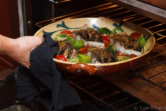 Bluefish with Dukkah, Tomatoes and Garlic Yogurt-24