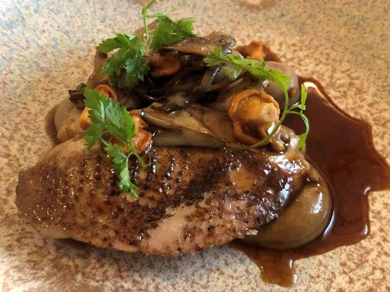 Starter of roast Norfolk quail breast