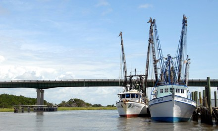Shrimp Season Closes west of Gulfport Ship Channel