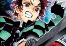 Kimetsu no Yaiba demon slayer