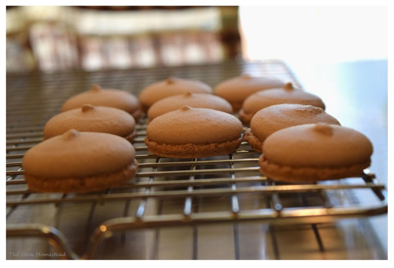 chocolate macaron shells not lopsided but with hats