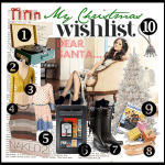 My 2011 Christmas Wishlist