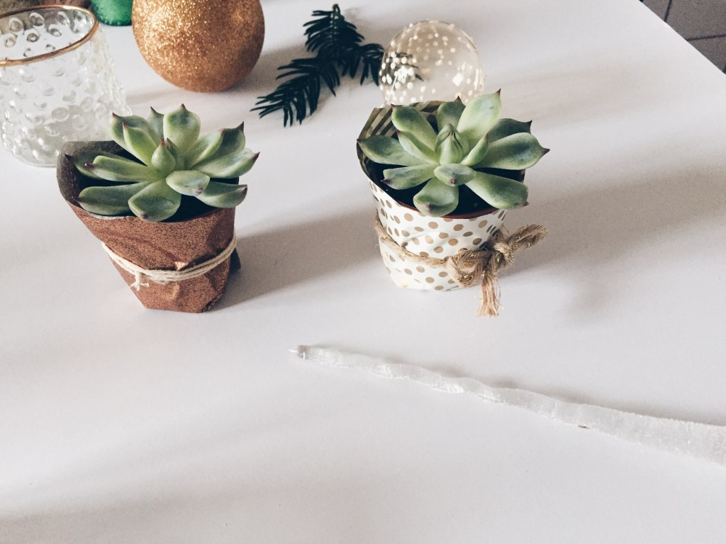 DIY last minute christmas decor ideas - the iwrapped plant