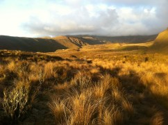 First glimpse of Mangatepopo Hut in the distance.