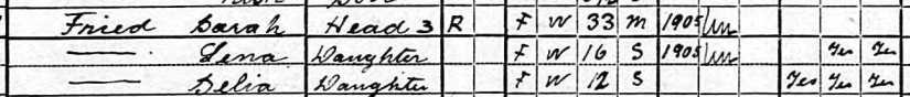 Sarah and girls 1920 Census a