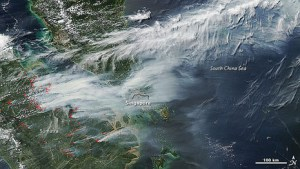satellite image of forest fires
