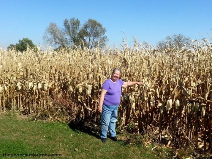Yup, it's corn  © Paul H. Byerly