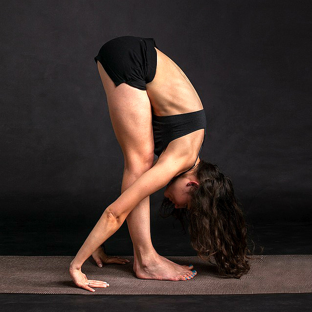The Best Hatha Yoga Poses for a 60-Minute Beginner Class