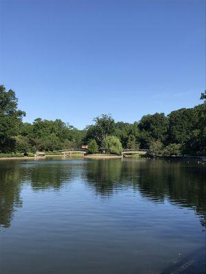 Pond at Yates Mill, Raleigh, North Carolina