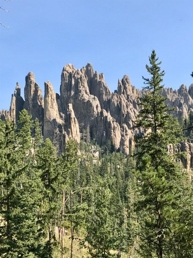 Black Hills hiking trail