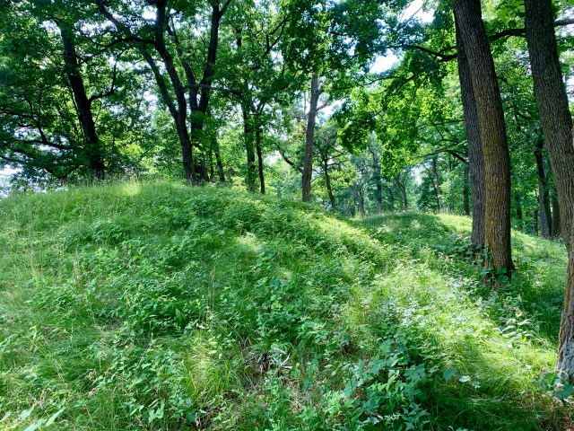 Effigy Mounds