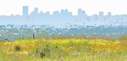 Calgary skyline from Nose Hill