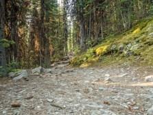 Saddleback-Pass-trail