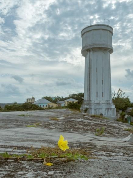 Fort-Fincastle