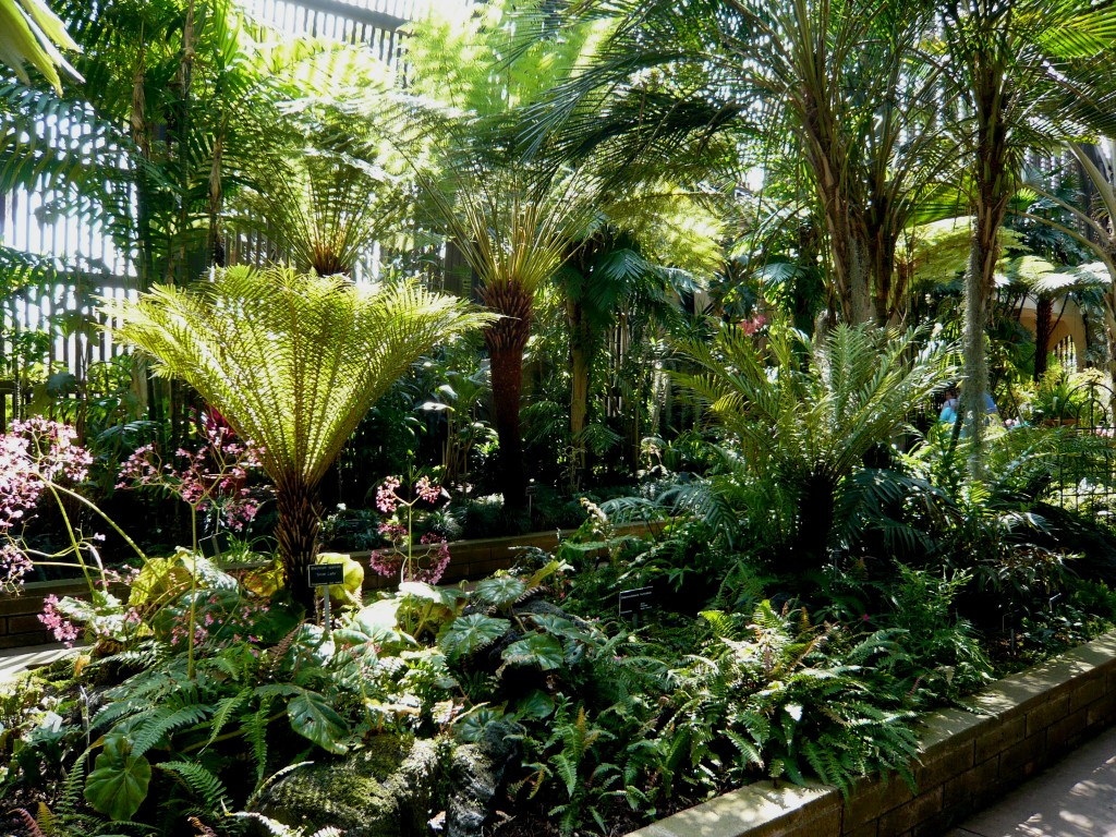 The Germinatrix » Blog Archive » Inspiration! A Tropical ... on Tropical Backyard  id=56144
