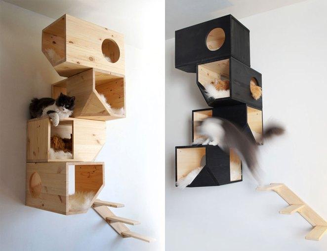 kedi ağaç kutusu