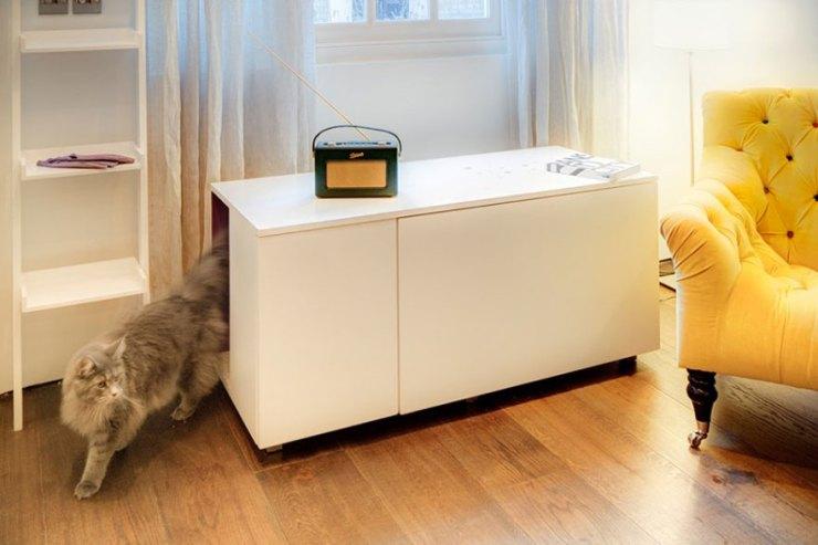 kedi banyosu