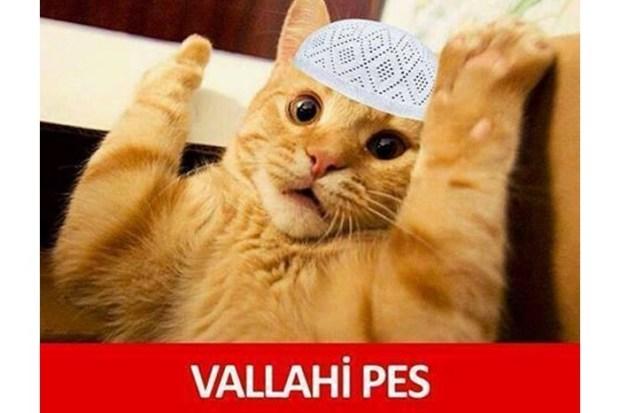 vallahi-pes