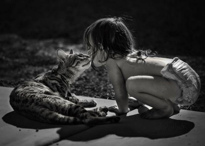 kediyi öpen çocuk