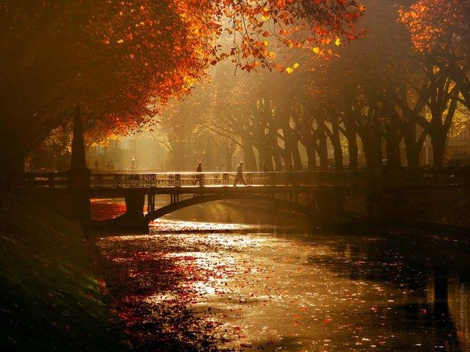 sonbahar fotoğrafı