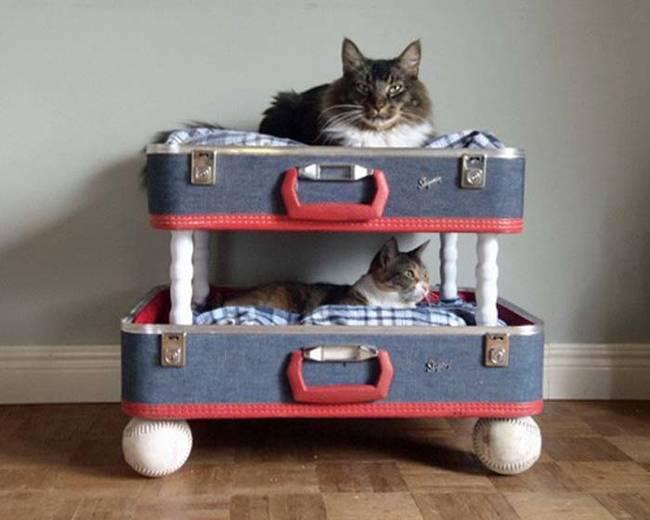 Hatta bavullardan iki katlı ev de yapabilirsiniz
