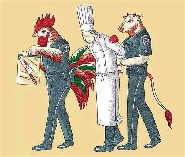 katil aşçı
