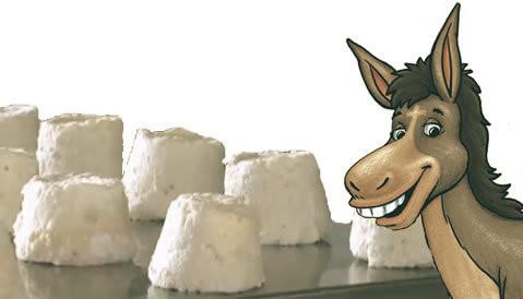 eşek peyniri