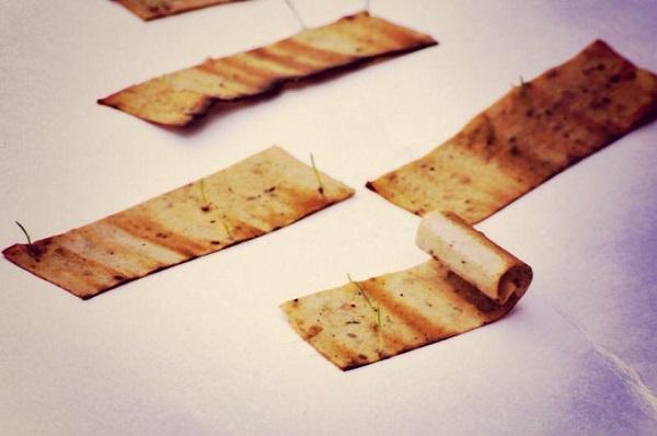 tohum sigara filtresi 1