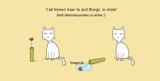 kedi eşyaları düzenlemeyi bilir