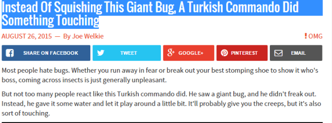 böcekle oynayan asker