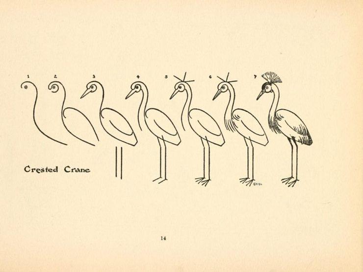 kuş çizme