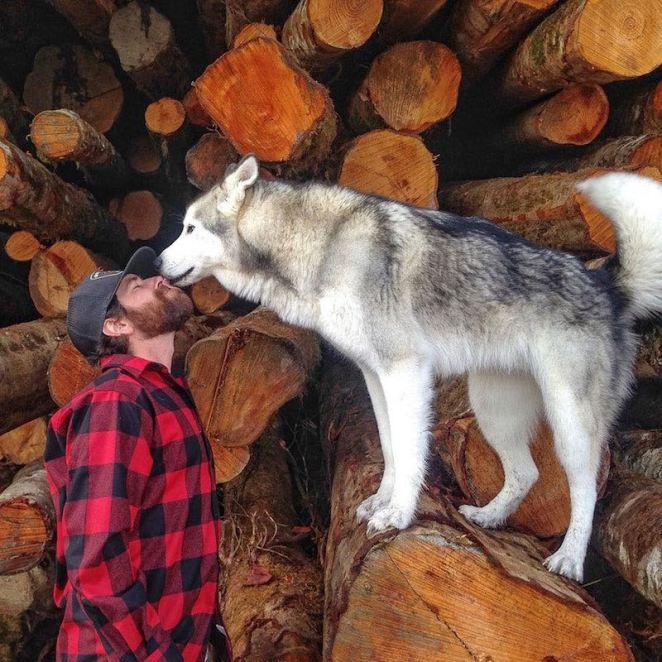 Loki-Kelly-Lund-Maceracı-Köpek-2