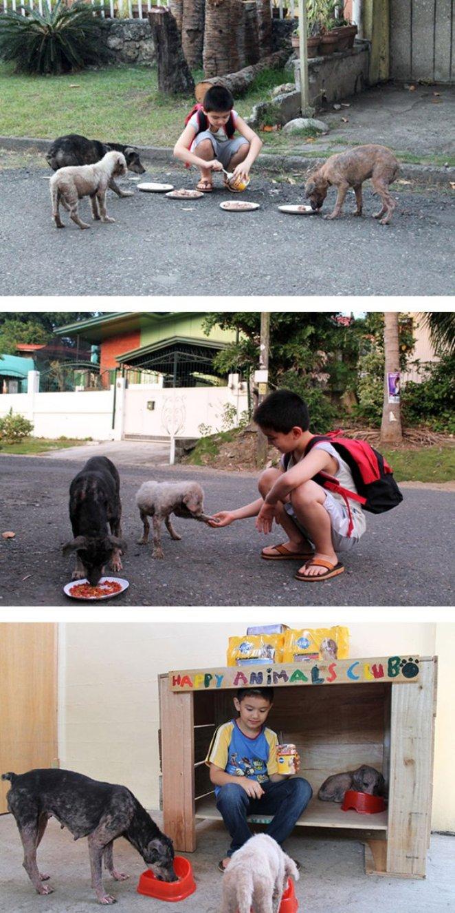 Bu çocuk sahipsiz hayvanlar için barınak açtı