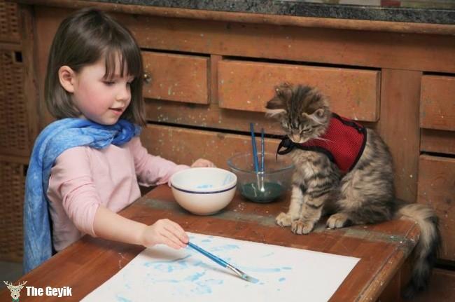 boya yapan kedi
