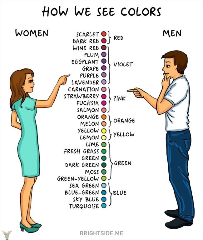 erkekler ve kadınlar arasındaki farklar 11