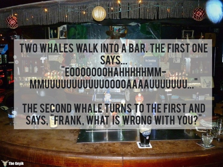 ingilizce şakalar 13