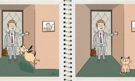 kedi-köpek-farkı 1