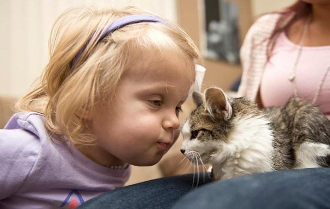kedi kız 2