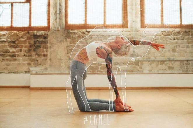 Yoga-Hayvan-3