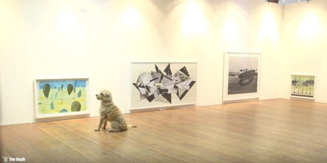 kopek-galeri2