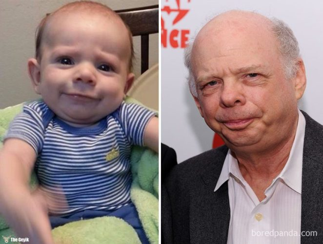 wallace-shawn